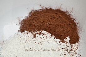 cocoa powder and dry ingredients
