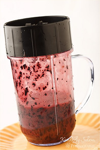 blueberries pureed in magic bullet