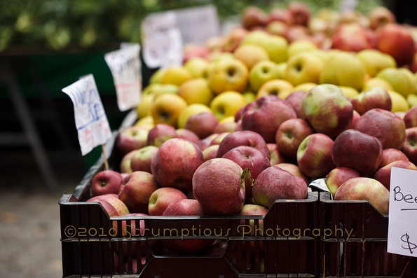 macoun apples and other apples in a crate